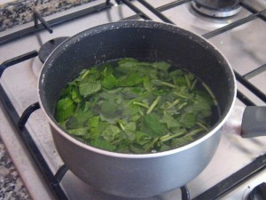 Making mint julep syrup