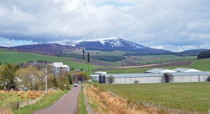 The Glenlivet scenery